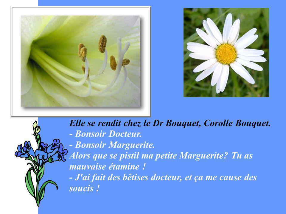 Elle se rendit chez le Dr Bouquet, Corolle Bouquet. - Bonsoir Docteur