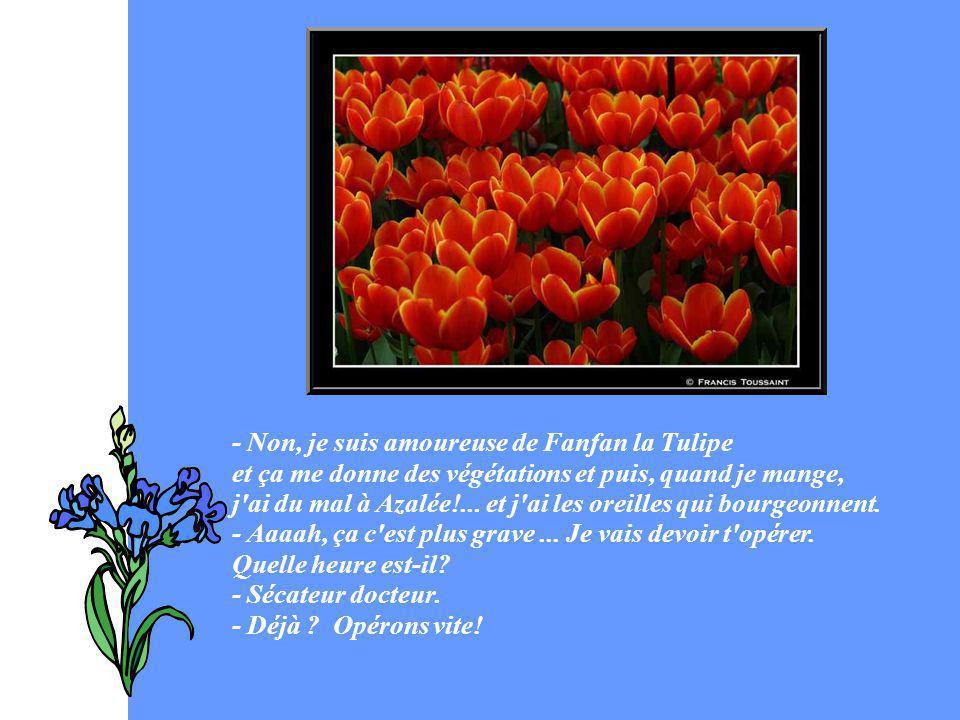 - Non, je suis amoureuse de Fanfan la Tulipe et ça me donne des végétations et puis, quand je mange, j ai du mal à Azalée!...