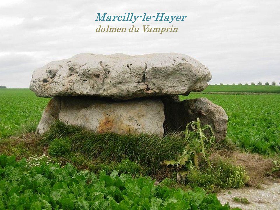 Marcilly-le-Hayer dolmen du Vamprin
