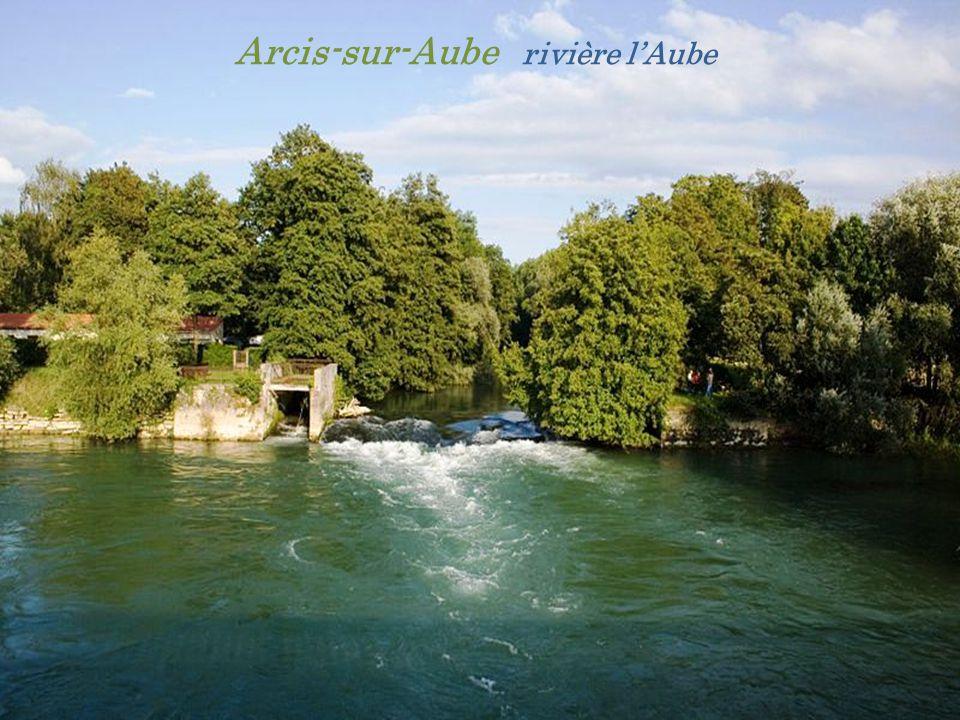 Arcis-sur-Aube rivière l'Aube
