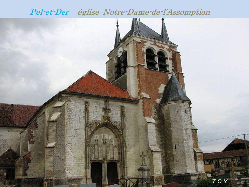 Pel-et-Der église Notre-Dame-de-l'Assomption