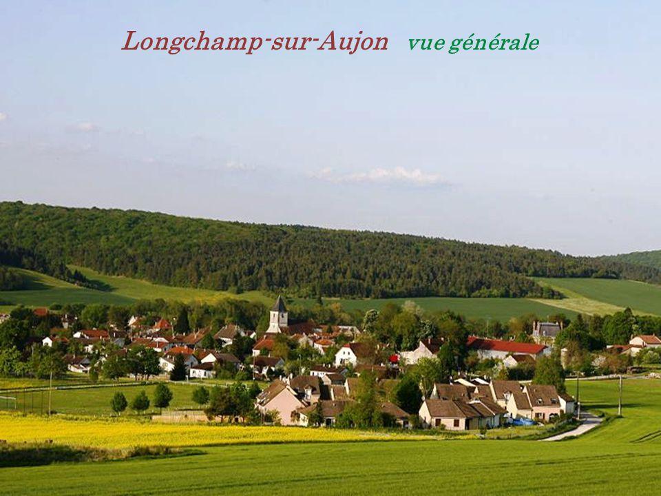 Longchamp-sur-Aujon vue générale