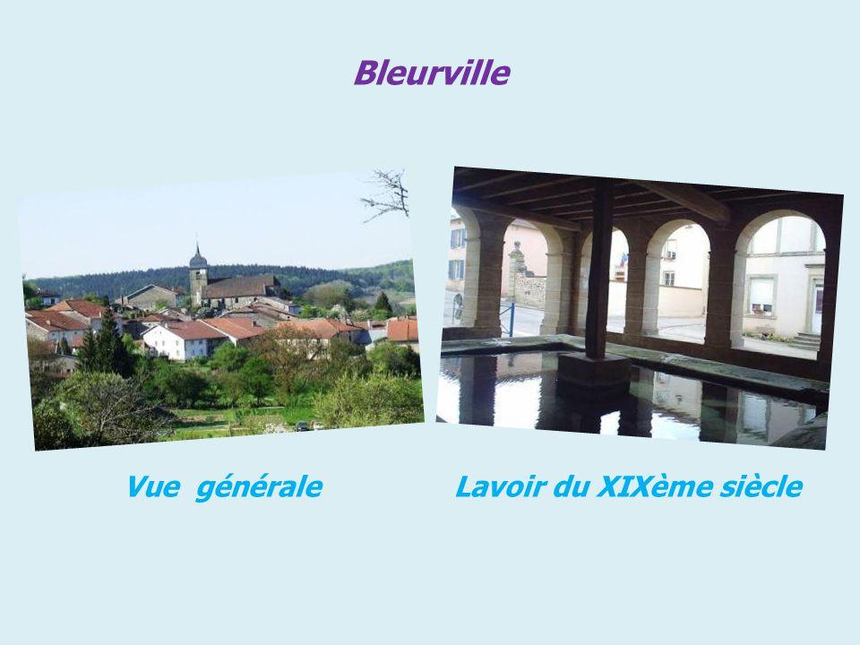 Bleurville Vue générale Lavoir du XIXème siècle