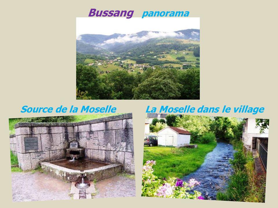 Bussang panorama Source de la Moselle La Moselle dans le village