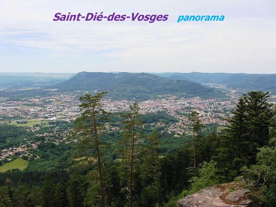 Saint-Dié-des-Vosges panorama