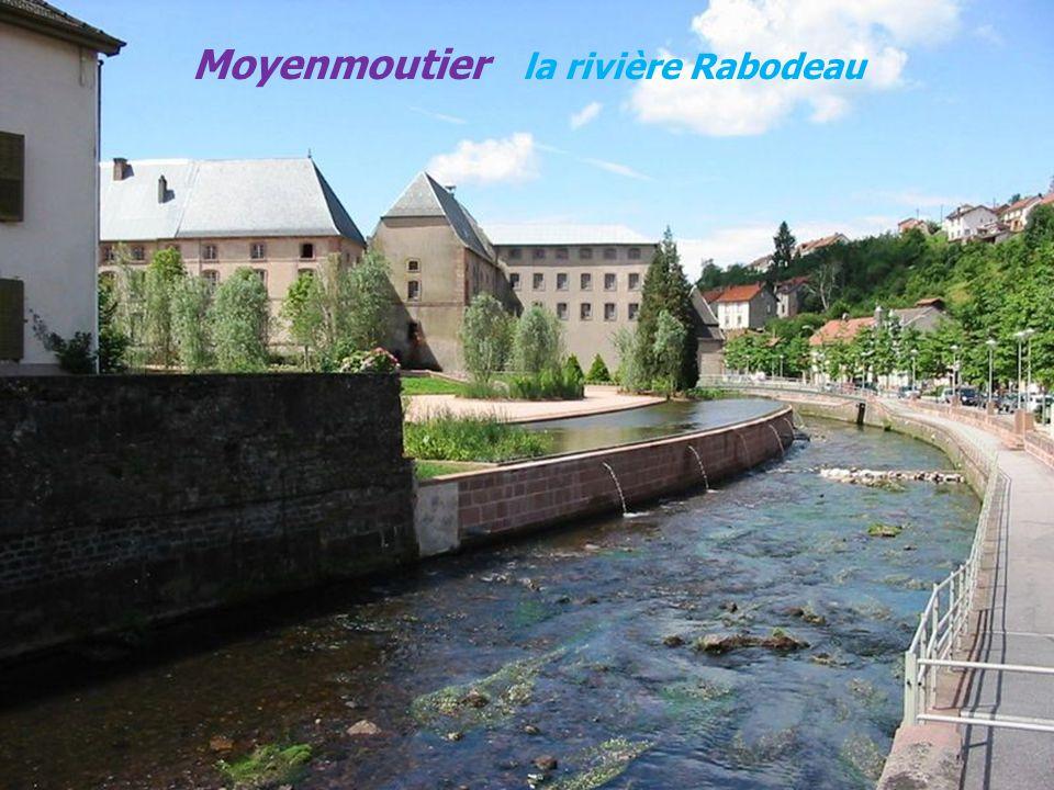 Moyenmoutier la rivière Rabodeau