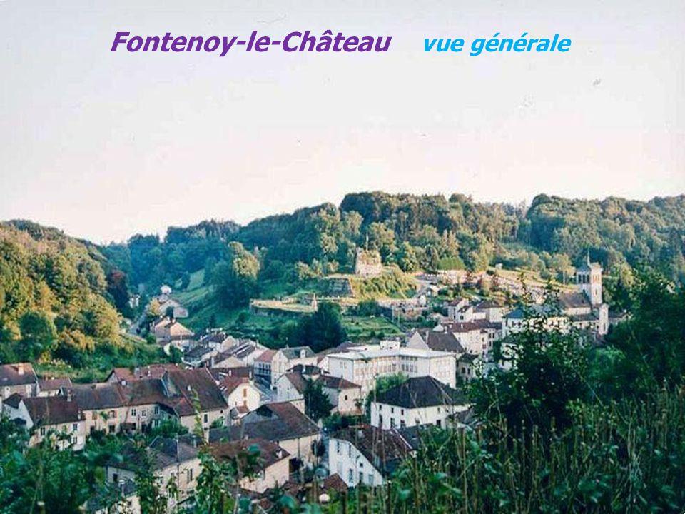 Fontenoy-le-Château vue générale