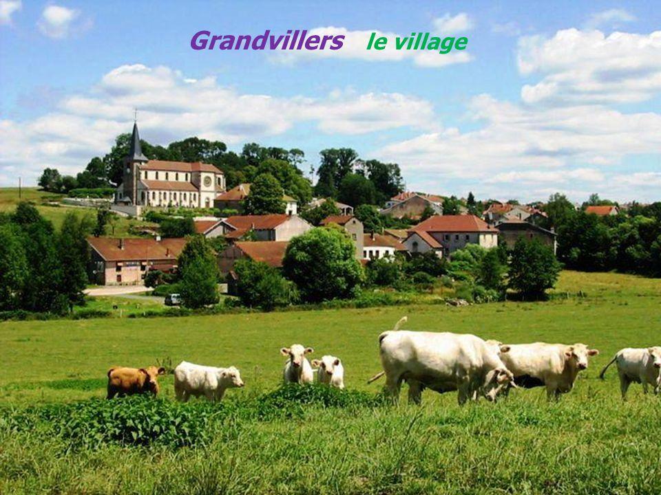 Grandvillers le village