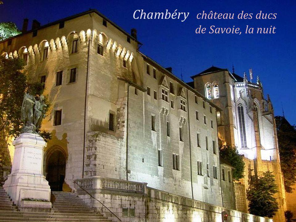 Chambéry château des ducs . de Savoie, la nuit