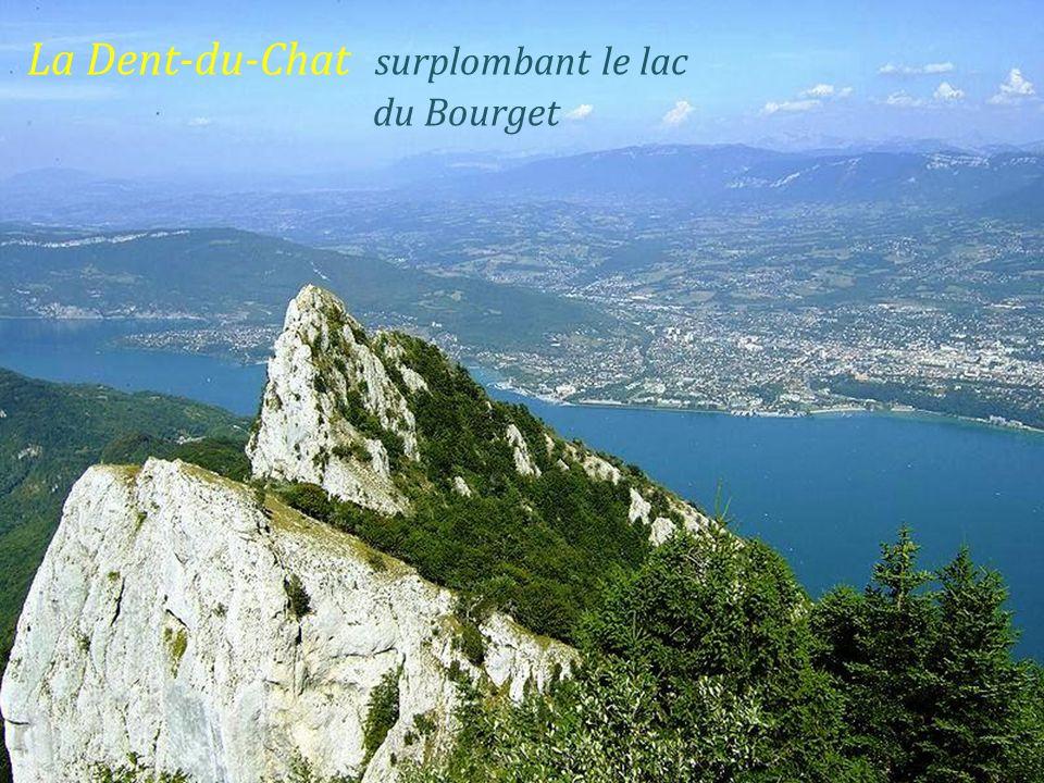 La Dent-du-Chat surplombant le lac . du Bourget