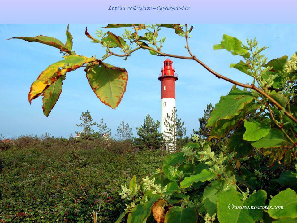 Le phare de Brighton – Cayeux-sur-Mer