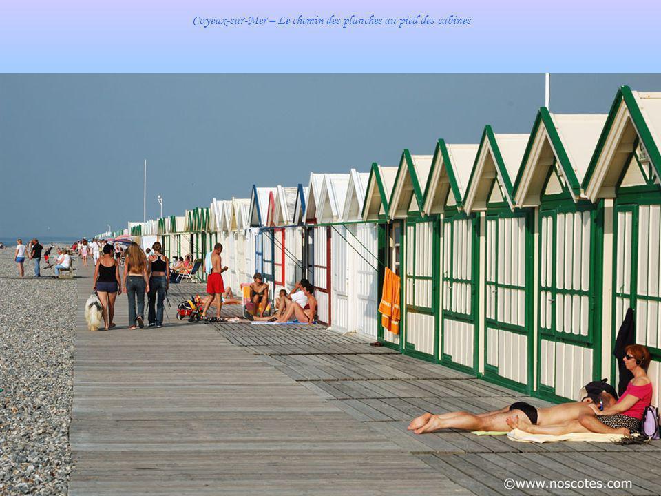 Coyeux-sur-Mer – Le chemin des planches au pied des cabines
