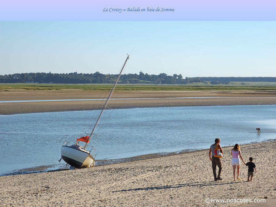 Le Crotoy – Balade en baie de Somme