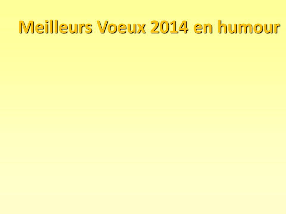 Meilleurs Voeux 2014 en humour