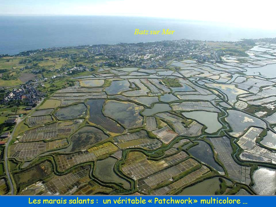 Les marais salants : un véritable « Patchwork » multicolore …