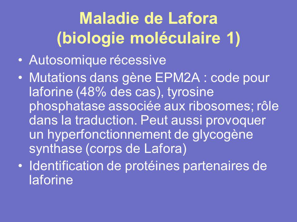 Maladie de Lafora (biologie moléculaire 1)