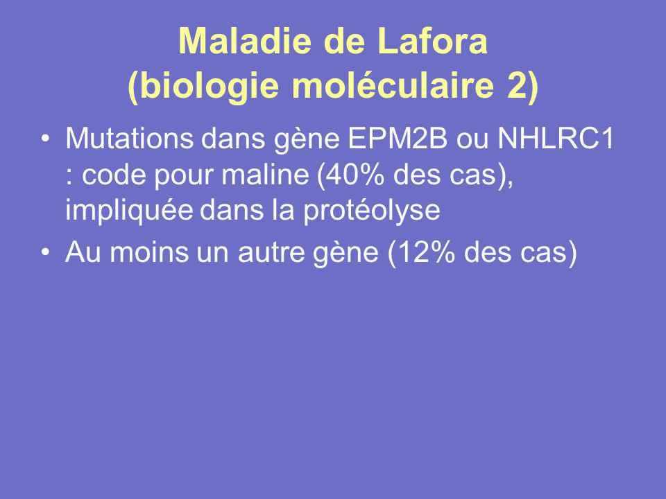 Maladie de Lafora (biologie moléculaire 2)