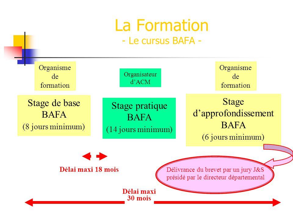 La Formation - Le cursus BAFA -