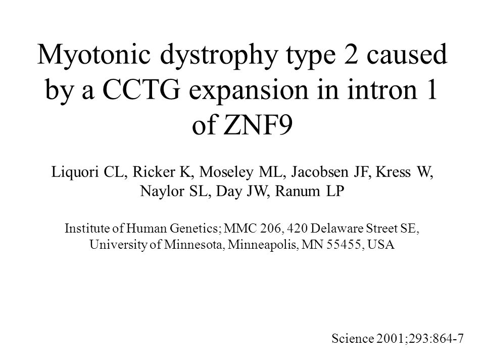 Myotonic dystrophy type 2 caused by a CCTG expansion in intron 1 of ZNF9 Liquori CL, Ricker K, Moseley ML, Jacobsen JF, Kress W, Naylor SL, Day JW, Ranum LP Institute of Human Genetics; MMC 206, 420 Delaware Street SE, University of Minnesota, Minneapolis, MN 55455, USA