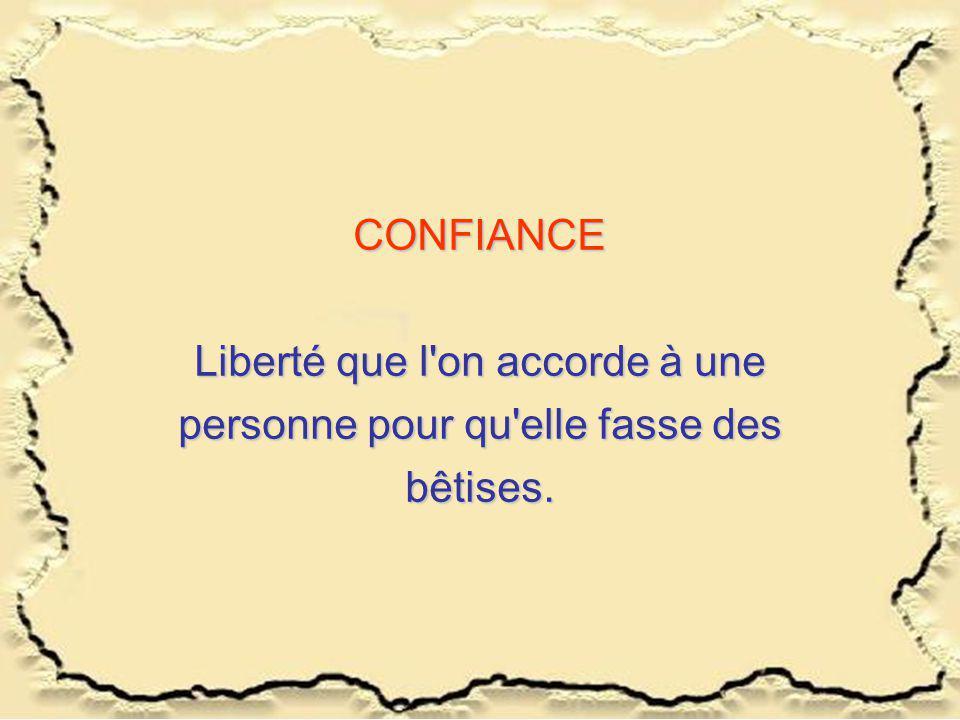 CONFIANCE Liberté que l on accorde à une personne pour qu elle fasse des bêtises.