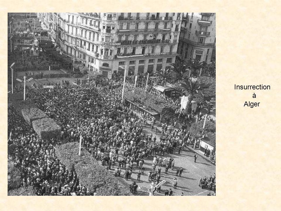 Insurrection à Alger