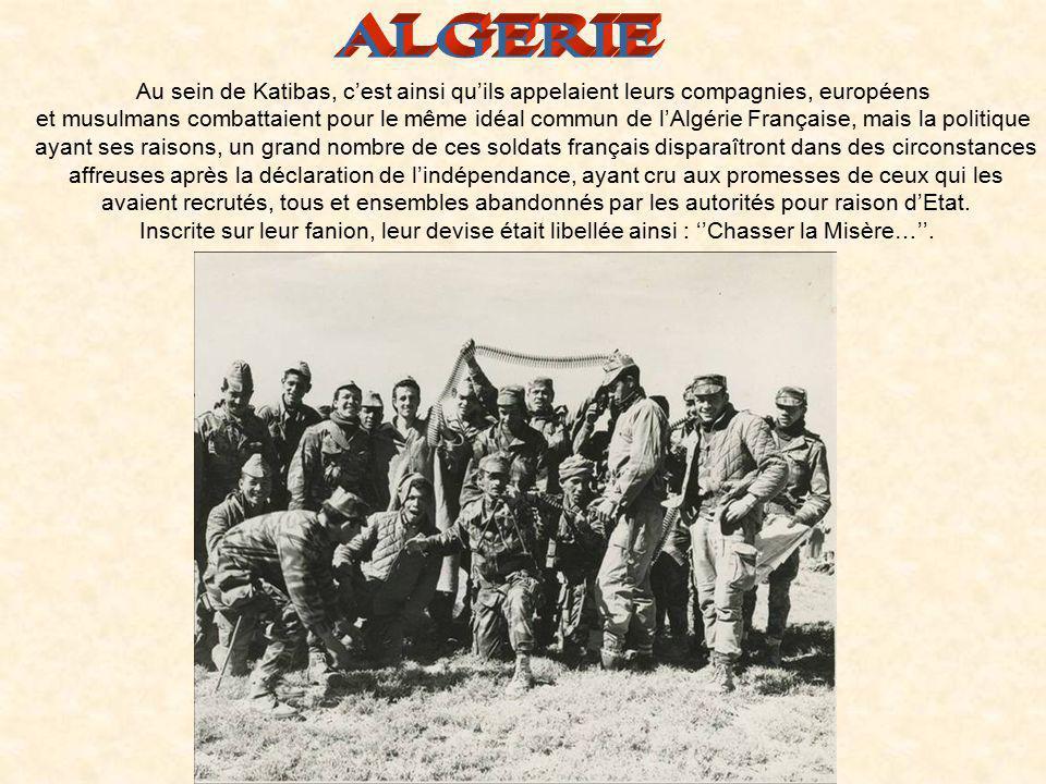 ALGERIE Au sein de Katibas, c'est ainsi qu'ils appelaient leurs compagnies, européens.