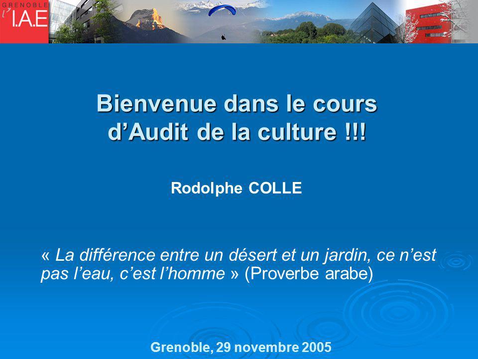 Bienvenue dans le cours d'Audit de la culture !!!
