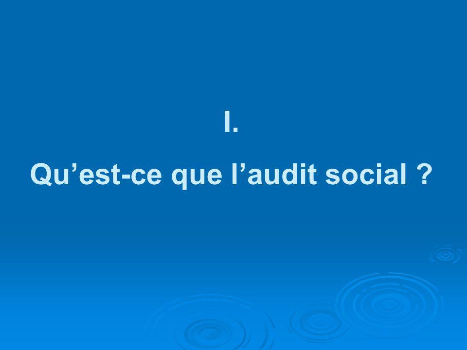 Qu'est-ce que l'audit social
