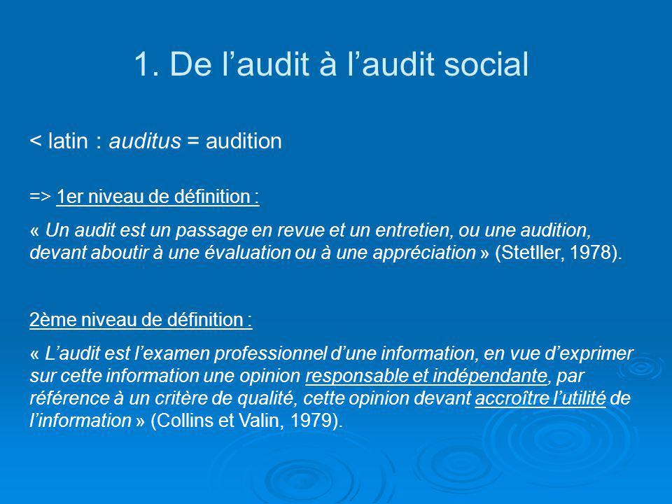 1. De l'audit à l'audit social