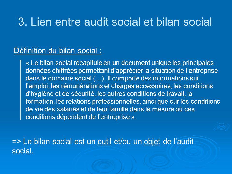 3. Lien entre audit social et bilan social