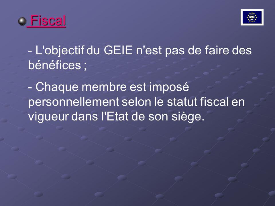 Fiscal L objectif du GEIE n est pas de faire des bénéfices ;
