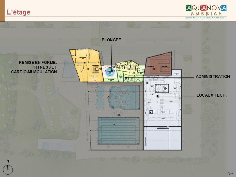 L'étage PLONGÉE REMISE EN FORME: FITNESS ET CARDIO-MUSCULATION
