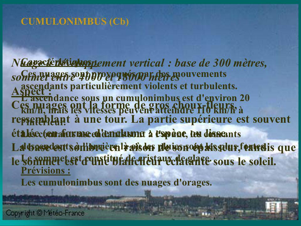 CUMULONIMBUS (Cb)