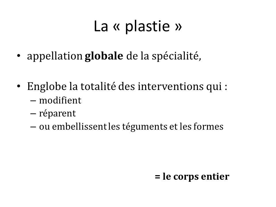 La « plastie » appellation globale de la spécialité,