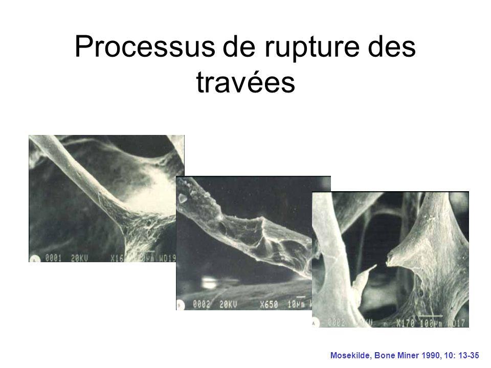 Processus de rupture des travées