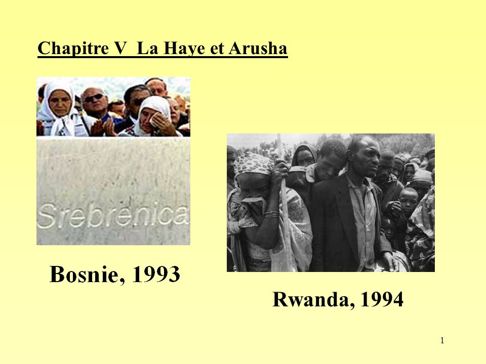 Chapitre V La Haye et Arusha