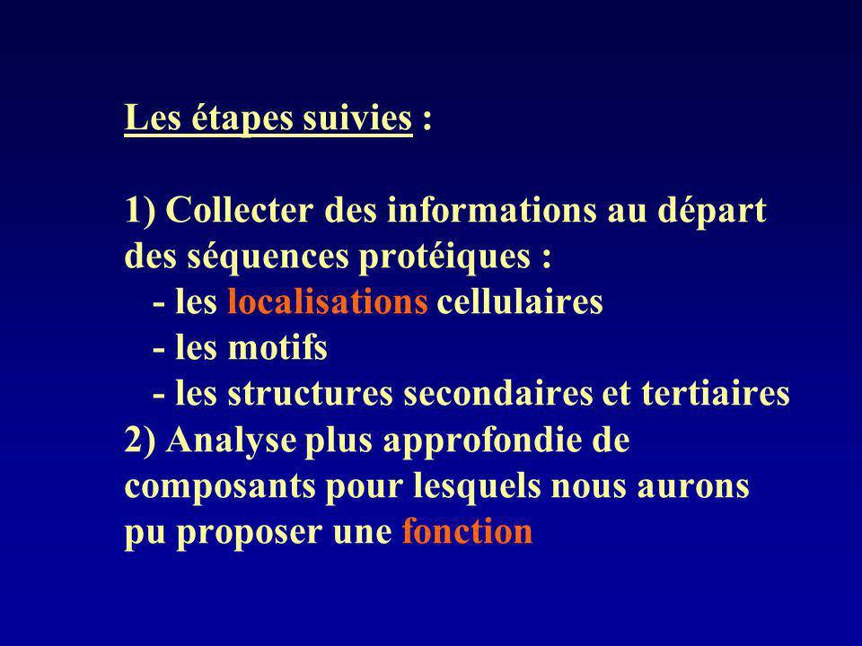 Les étapes suivies : 1) Collecter des informations au départ des séquences protéiques : - les localisations cellulaires - les motifs - les structures secondaires et tertiaires 2) Analyse plus approfondie de composants pour lesquels nous aurons pu proposer une fonction