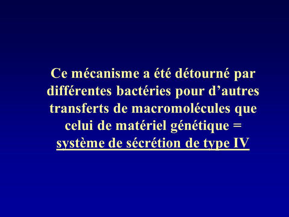 Ce mécanisme a été détourné par différentes bactéries pour d'autres transferts de macromolécules que celui de matériel génétique = système de sécrétion de type IV