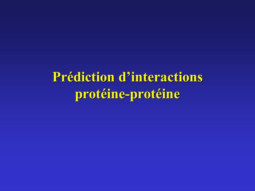 Prédiction d'interactions protéine-protéine