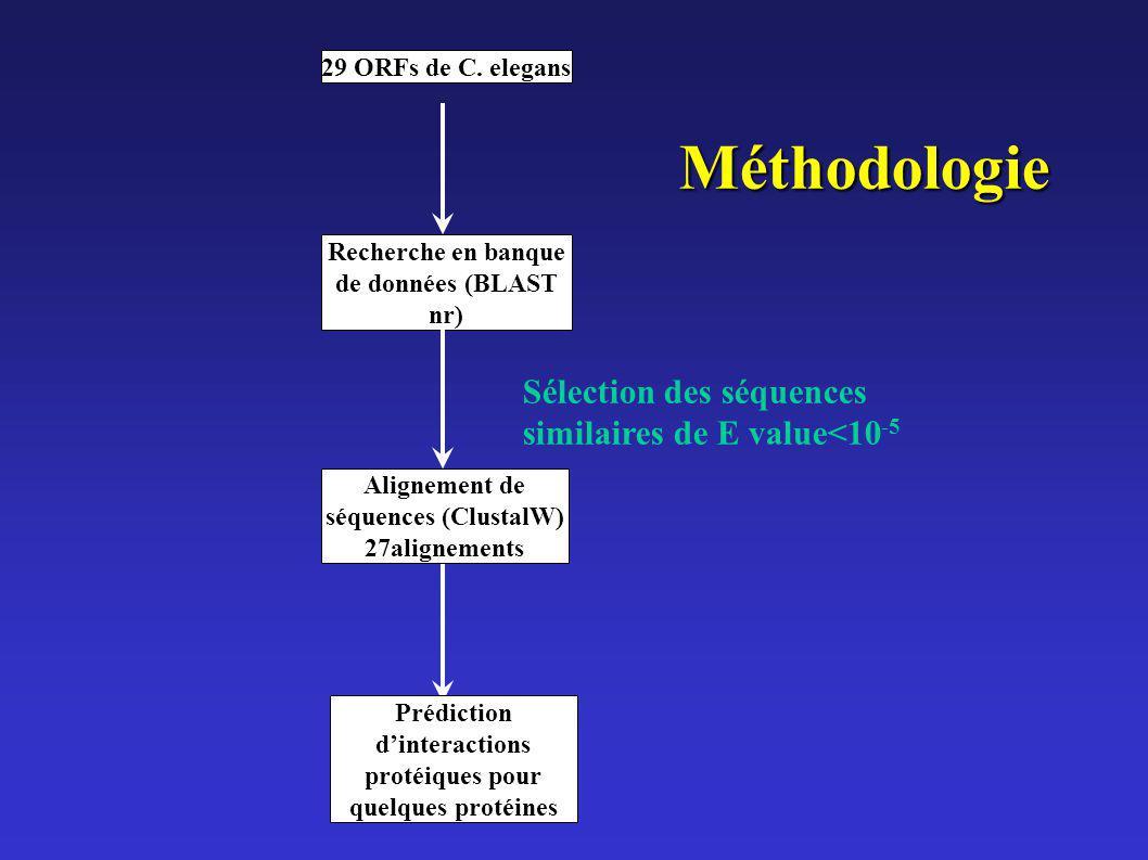Méthodologie Sélection des séquences similaires de E value<10-5