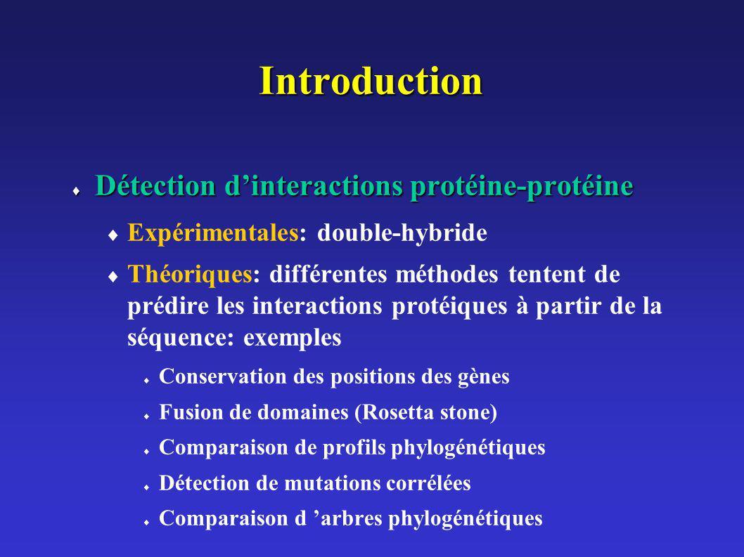 Introduction Détection d'interactions protéine-protéine