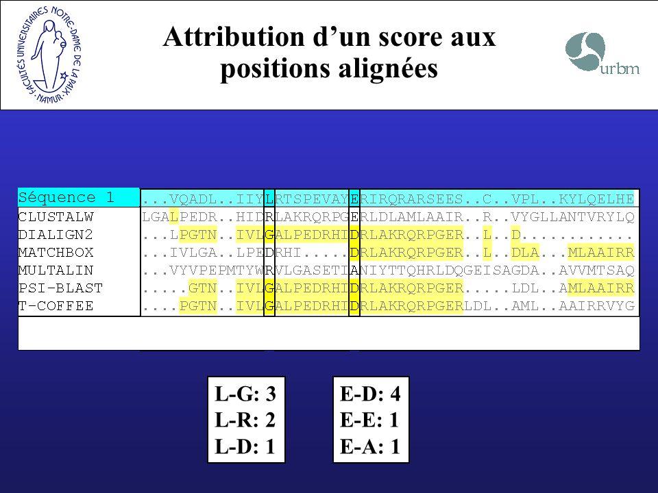Attribution d'un score aux positions alignées