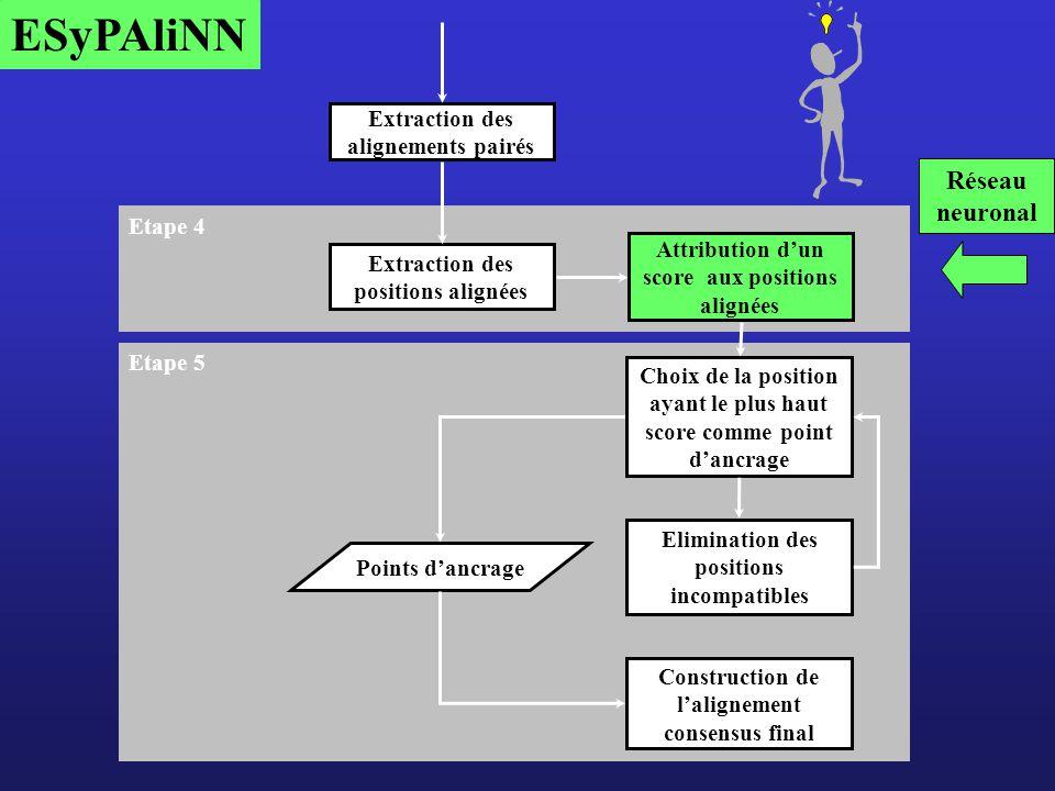 ESyPAliNN Réseau neuronal Extraction des alignements pairés Etape 4