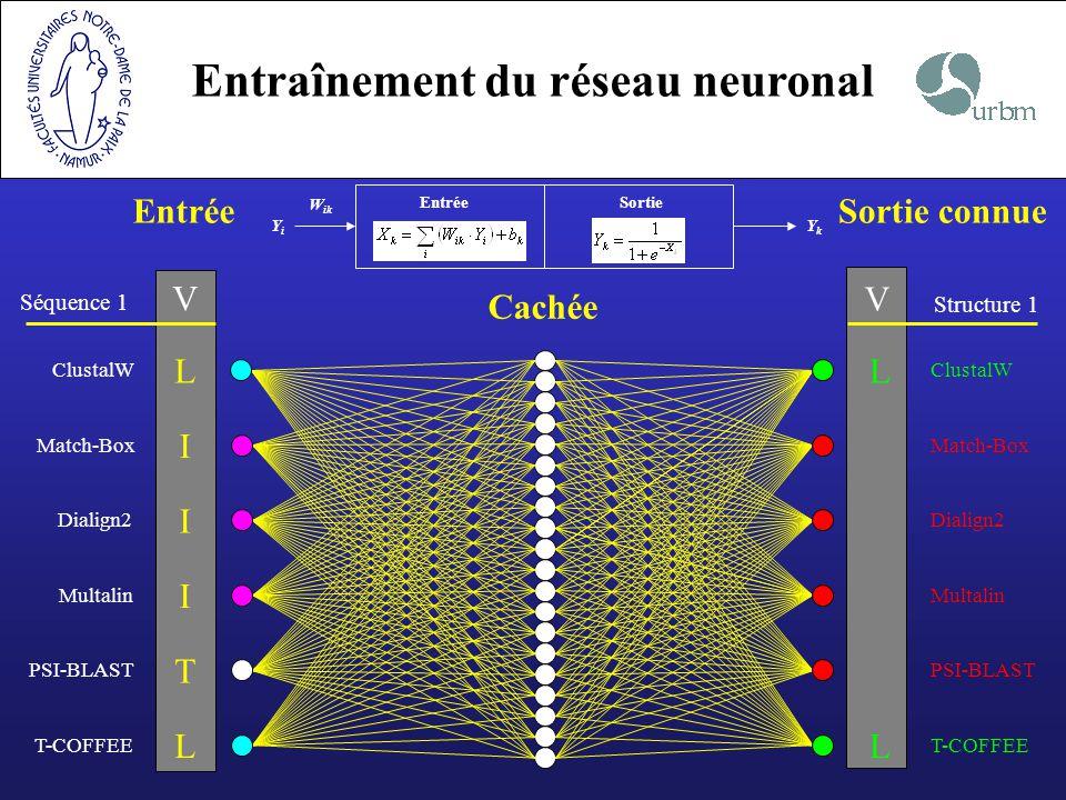 Entraînement du réseau neuronal