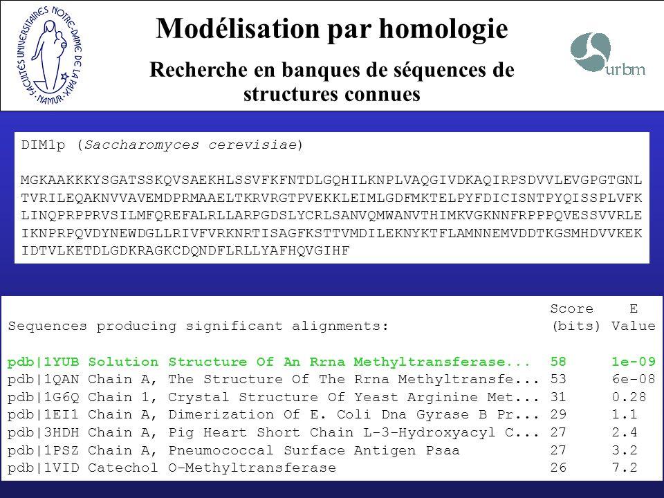 Modélisation par homologie