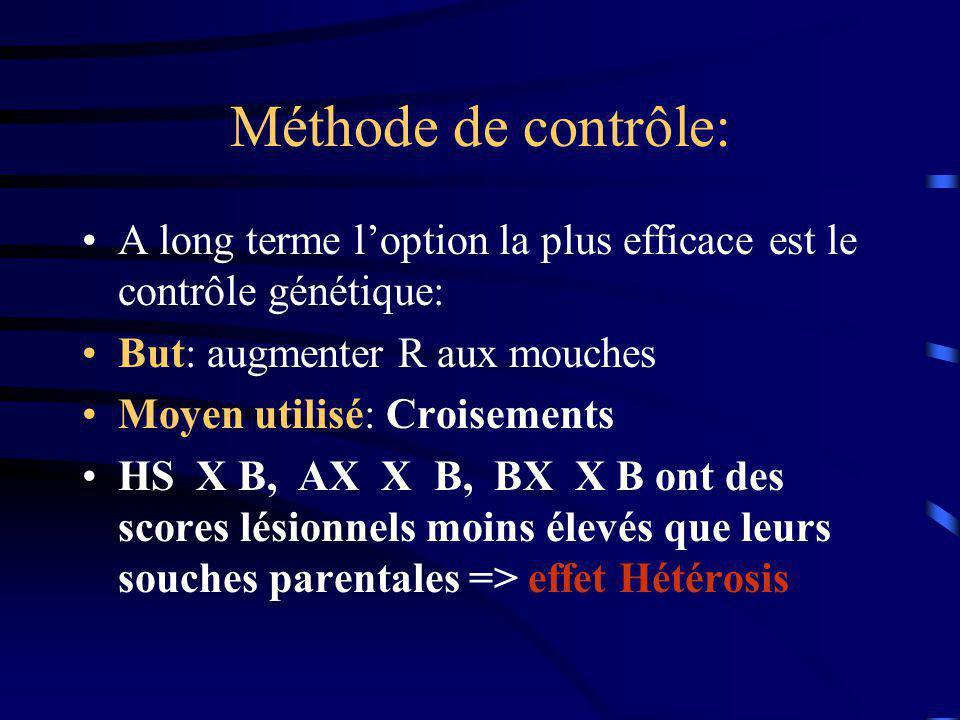 Méthode de contrôle: A long terme l'option la plus efficace est le contrôle génétique: But: augmenter R aux mouches.