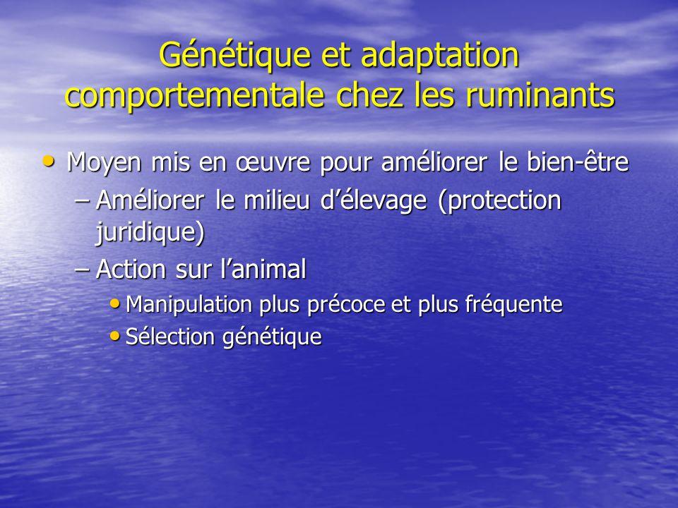 Génétique et adaptation comportementale chez les ruminants