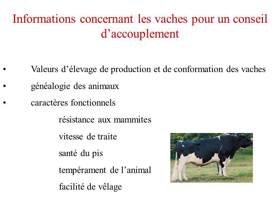 Informations concernant les vaches pour un conseil d'accouplement