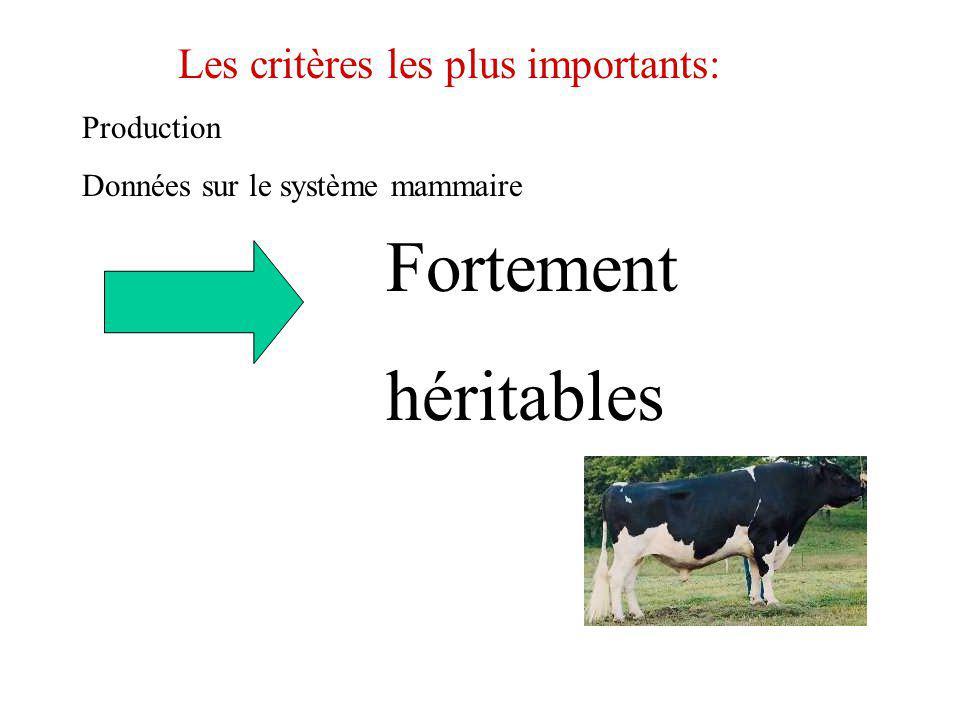 Fortement héritables Les critères les plus importants: Production