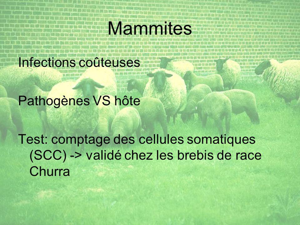 Mammites Infections coûteuses Pathogènes VS hôte
